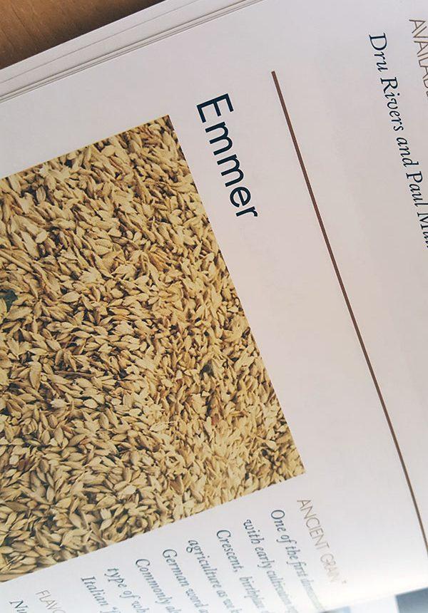 Grain Catalog - Emmer